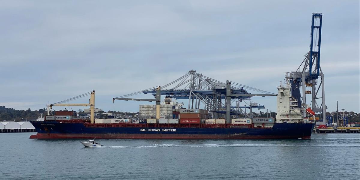 3 formas de potenciar el e-commerce siendo freight forwarder